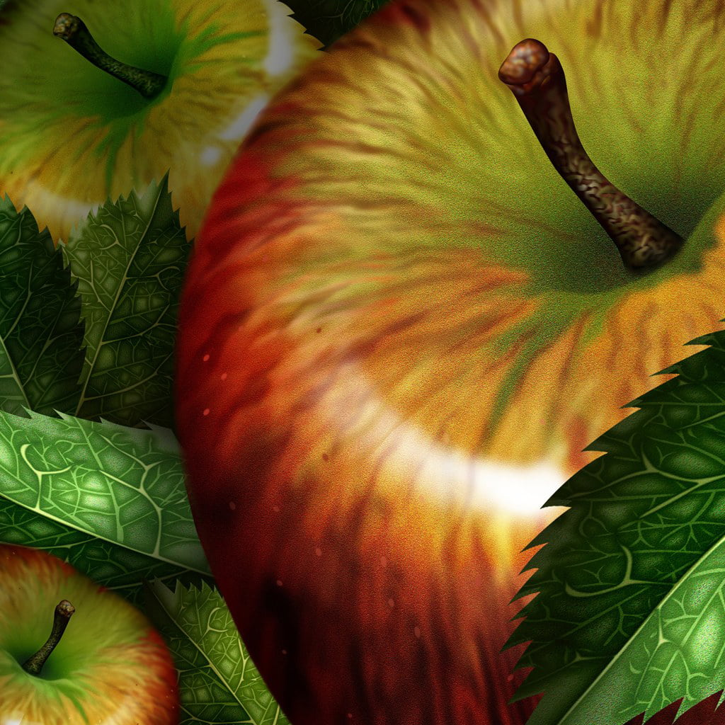 psd-food-illustrations-3114-apples-illustration-apple-picture-1-www.wallbest.com